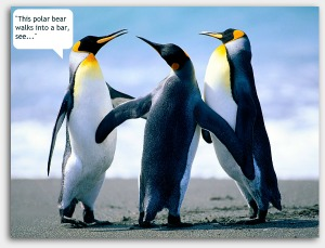 penguin conversation